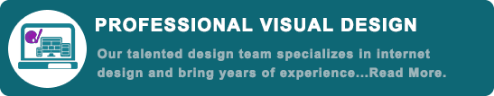 professional visual design